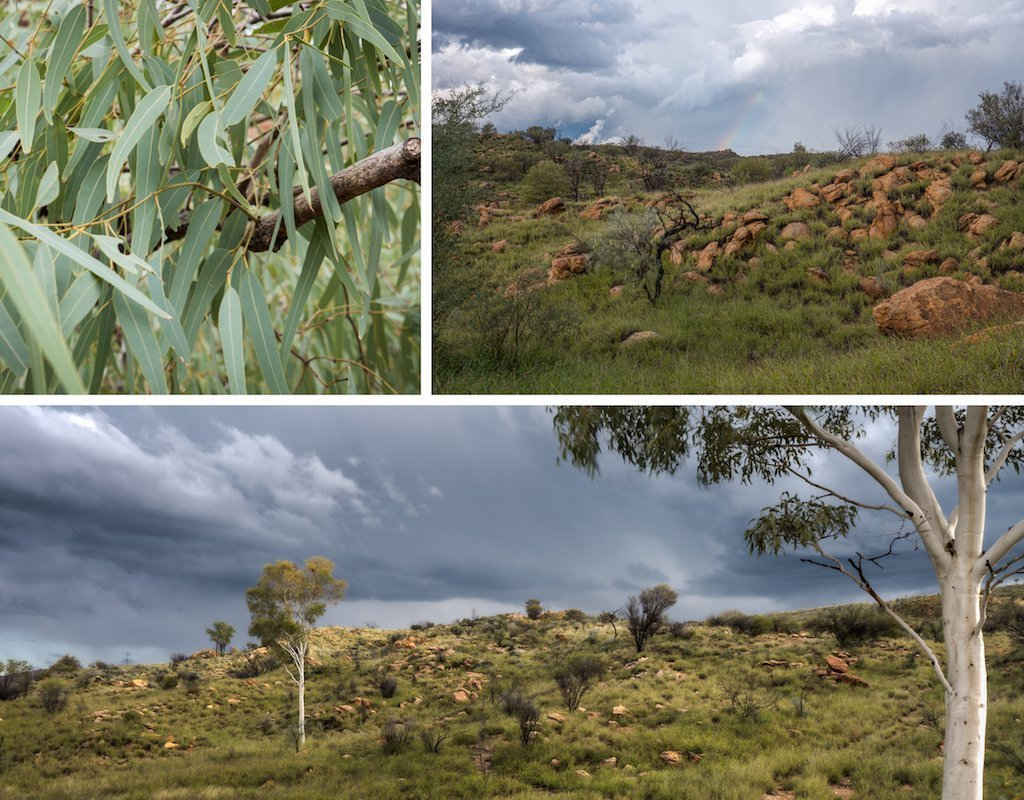 8. Alice Springs and surrounds