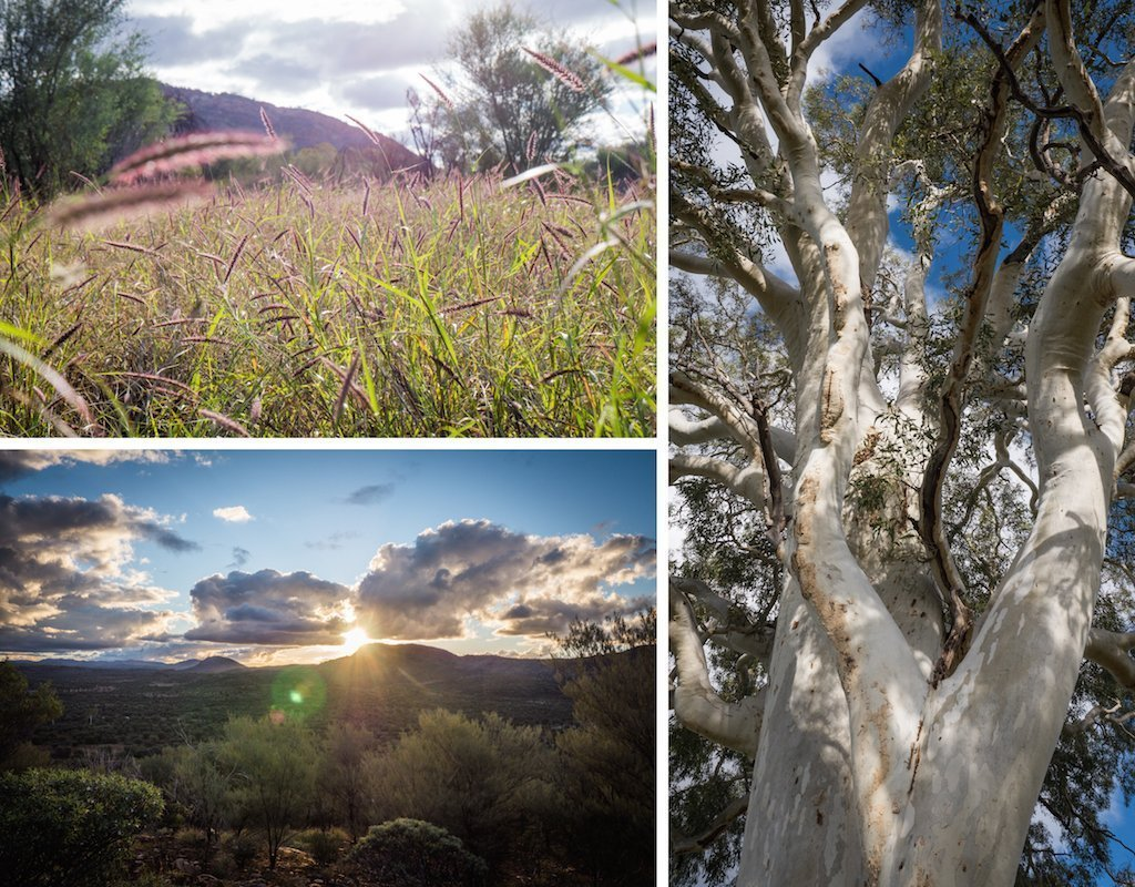 9. Simpsons Gap Alice Springs Surrounds