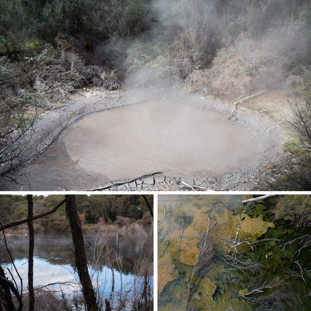 1-rotorua-geothermal