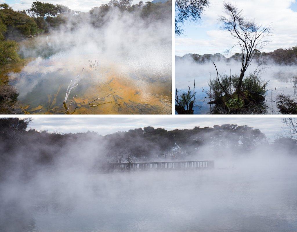 11-rotorua-geothermal