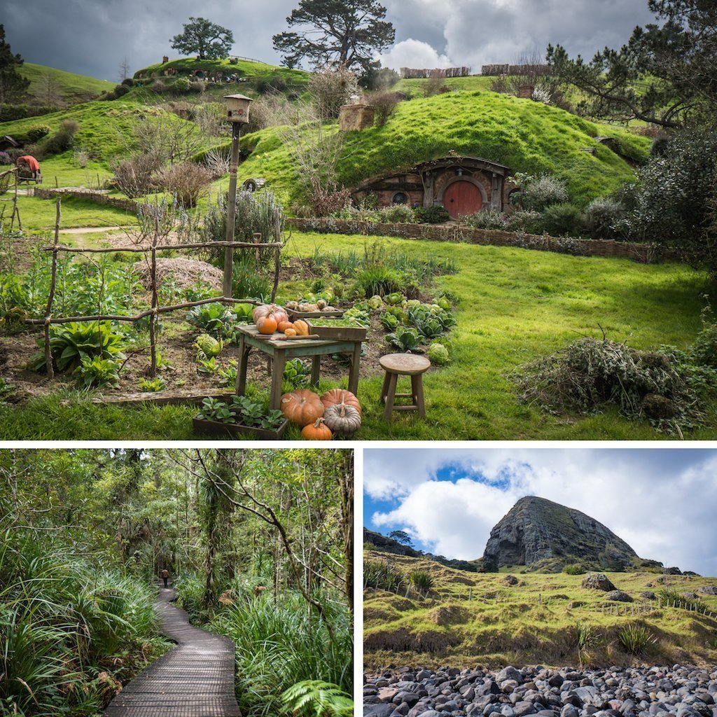 7 Reasons to Visit New Zealand in Spring everything is green