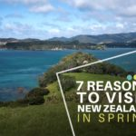 7 Reasons to Visit New Zealand in Spring