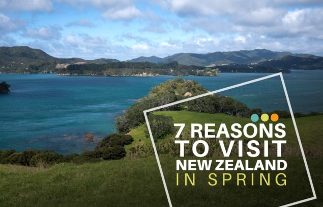 7-reasons-to-visit-nz