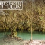 The Best Cenotes Near Tulum
