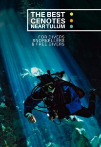 The Best Cenotes near Tulum and Playa del Carmen for snorkellers, divers and free-divers - castaway with Crystal