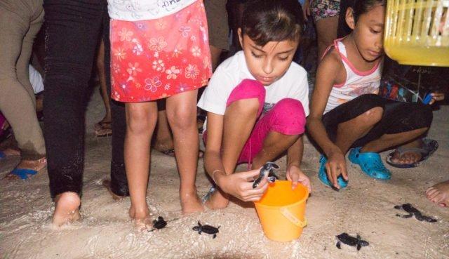 Turtle Liberation Isla Mujeres