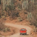 Travel Guide: Mexico Road Trip