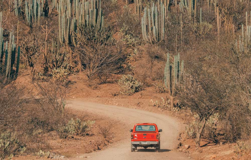 Mexico Road Trip: All You Need To Know About Driving in Mexico