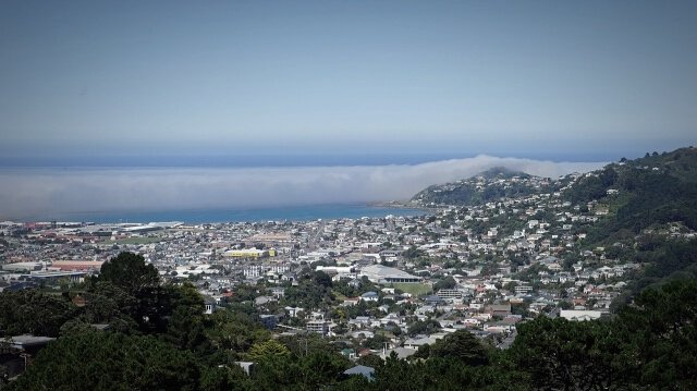 View of wellington from Victoria park - North Island New Zealand Road Trip | New Zealand North Island Itinerary | must see | Attractions | Things to do in NZ | Tours | Points of interest | What to see | Highlights | Places to see | Budget Guide | Fun things | Camper van | Motorhome