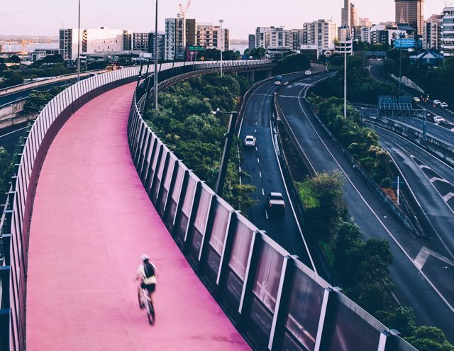 Cycle Along the Pink Path - Free Things to do in Auckland New Zealand