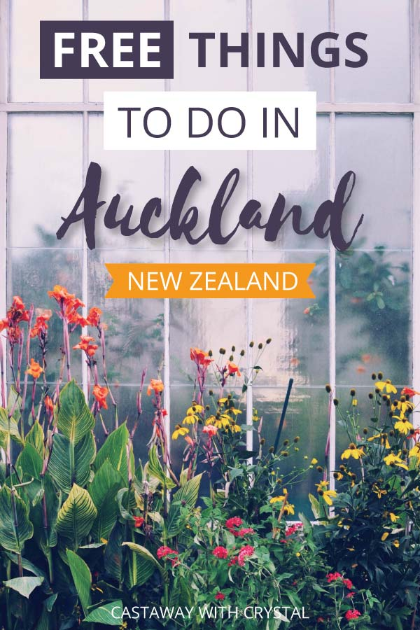 "Image of flowers in Auckland with text olay: ""Free Things to do in Auckland New Zealand"""