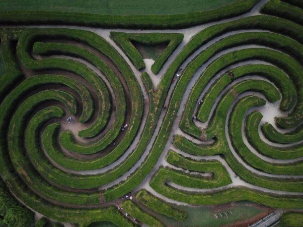 bucket list 2019 hedge maze