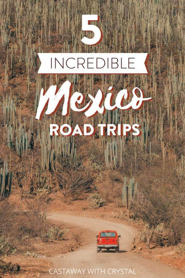 "A truck drives down a dirt road surrounded by cactus, with text olay: ""5 Incredible Mexico Road Trips"""