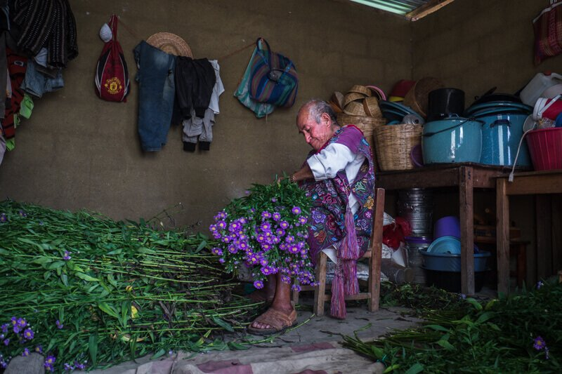 A flower farmer near San Cristobal de las Casas - Driving in Mexico Road Trip