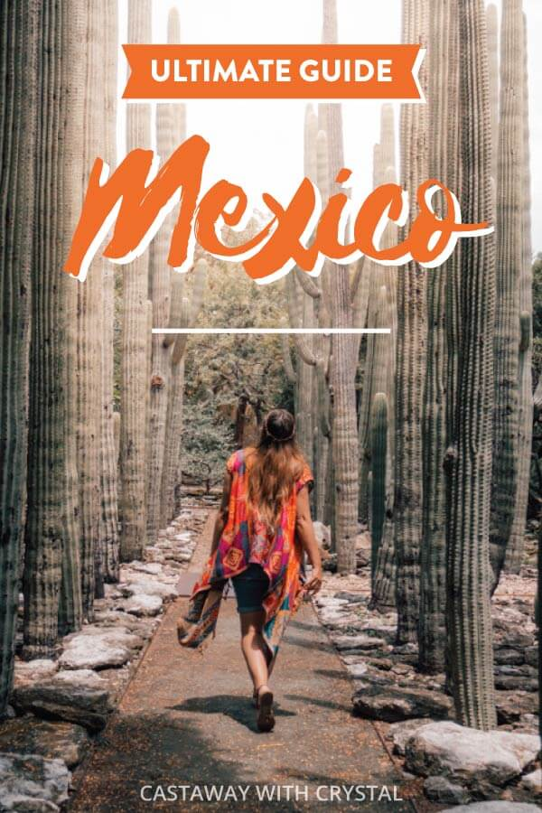 Woman walks through cactus in Oaxaca for post Planning a trip to Mexico on a budget