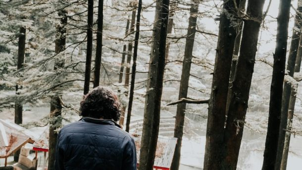 Man overlooks Dal Lake lined with pine trees for Best places to visit in Dharamshala and McLeodganj