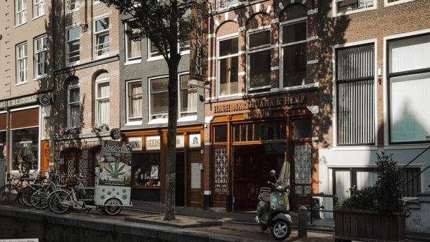 The Marajuana Museum is a things to do in Amsterdam for adults